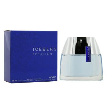 Iceberg Эффьюжн Туалетная Вода-Спрей 75ml/2.5oz